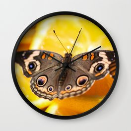 Common Buckeye Junonia Coenia Wall Clock
