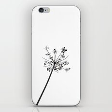 Simply lace iPhone & iPod Skin