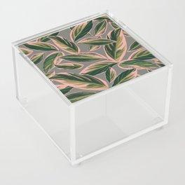 Calathea Leaves Pattern- Pink Green Gray Acrylic Box
