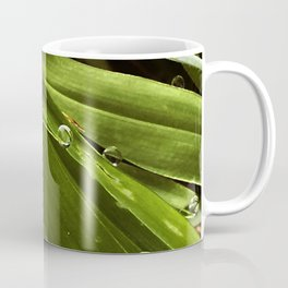 Dew Drop Jewels on Summer Green Grass Coffee Mug
