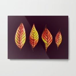 Four Red And Yellow Autumn Leaves Metal Print