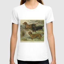 Vintage Dachshunds T-shirt