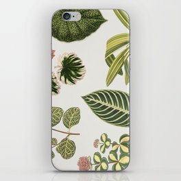 Green Botanical Plants Watercolor Pattern iPhone Skin