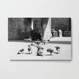 York (245) Metal Print