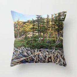 Dream Lake Colorado Throw Pillow