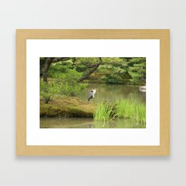 Golden Heron Framed Art Print