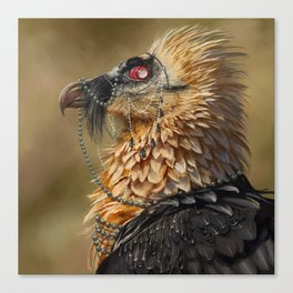 Necrophagy: Bearded Vulture Canvas Print
