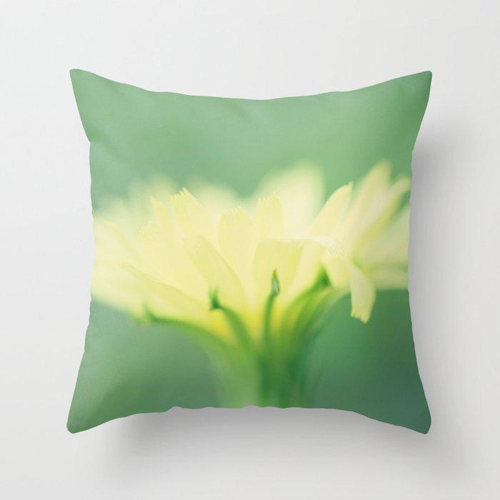 Fairy Night-light Throw Pillow