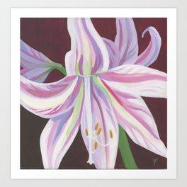 Pink amaryllis Art Print