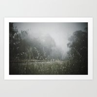Splendor In the Grass Art Print