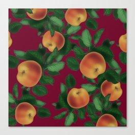 apples & apples Canvas Print