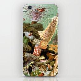 TANGAROA iPhone Skin