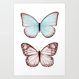 Butterfly Collection II Art Print