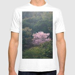 A Solitary Cherry Blossom Tree in Sankeien Garden - Yokohama, Japan T-shirt