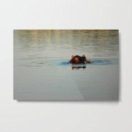 Cute Hippo Bathing Metal Print