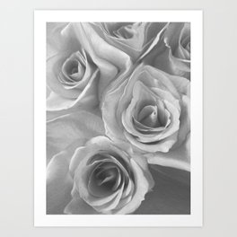 Roses in Black and White Art Print