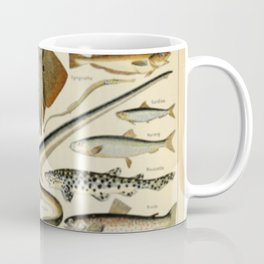 Fish Chart Coffee Mug