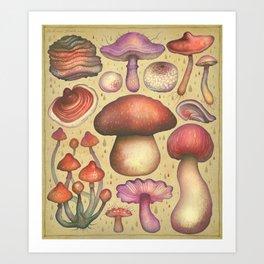 Regnum fungorum Art Print