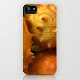 African Horned Melons iPhone Case