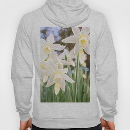 Kiss of Spring Hoody