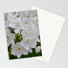 White Flowers at Longwood Stationery Cards