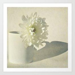 Chrysanthemum Shadow. Art Print