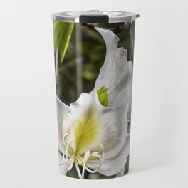 Beautiful butterfly tree bloom Travel Mug