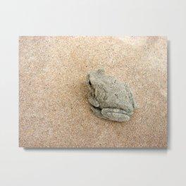 Sand Frog Metal Print