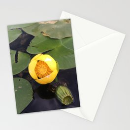 Naturals by Nikki - Yellow Water Lily Stationery Cards