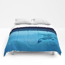 Orca Of The Ocean Comforters