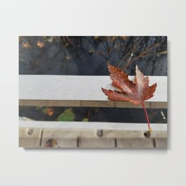 Leaf Resting Near Water Metal Print