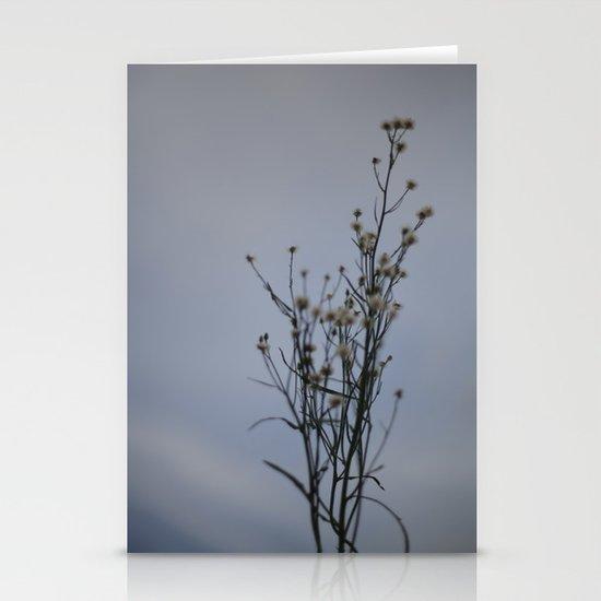 Autumn-Dandelion Stationery Cards