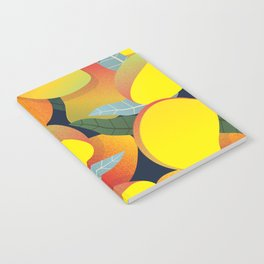 Mango Notebook