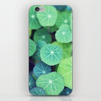 the life aquatic iPhone & iPod Skins featuring Aquatic Life by BURNEDINTOMYHE∆RT♥