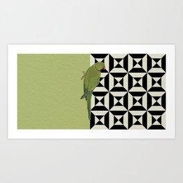 Parrot Checkers Art Print