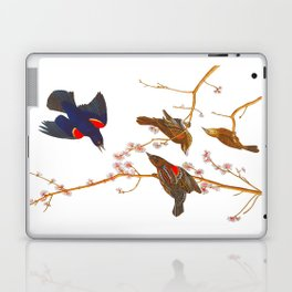 Red winged Starling, or Marsh Blackbird Laptop & iPad Skin