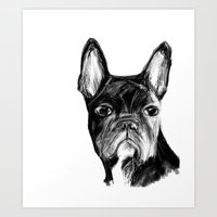 french Art Prints featuring French Bulldog by James Peart