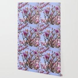 Magnolia Blooms Wallpaper