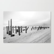 Sandy #2 Canvas Print