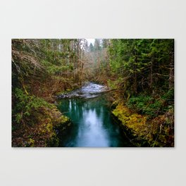 Duckabush River Canvas Print