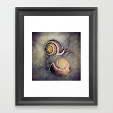 The Yin and Yang of snails .... Framed Art Print