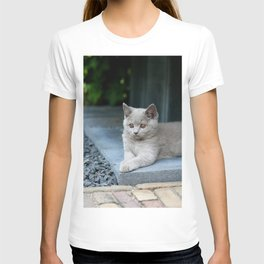 Bikkel the cat ! T-shirt