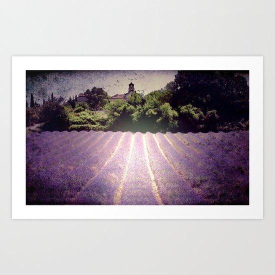 Lavenderdays Art Print