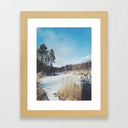 Frozen pond  Framed Art Print
