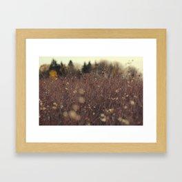 Fields + Fields  Framed Art Print