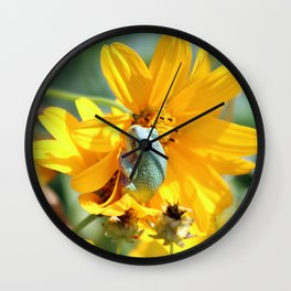 Froggy Floral Wall Clock