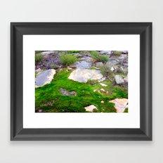 Volcanic Rock & Moss Framed Art Print