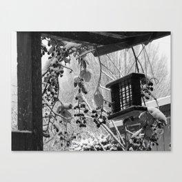Birdfeeder Canvas Print