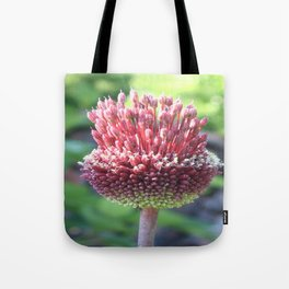 Close Up of An Ornamental Onion or Drumstick Allium Tote Bag