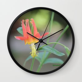 Pastel Columbine Afternoon Wall Clock